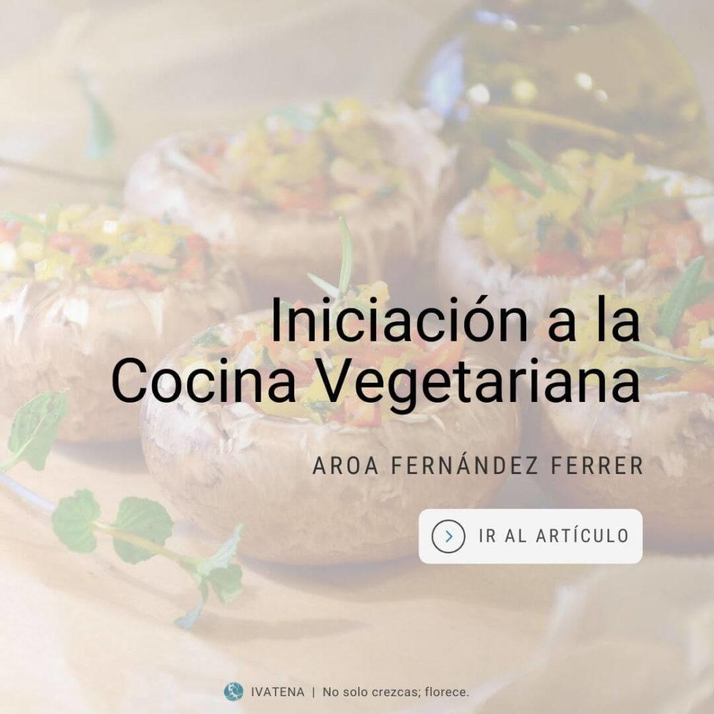 Iniciacion a la cocina vegetariana. Aroa Fernandez Ferrer