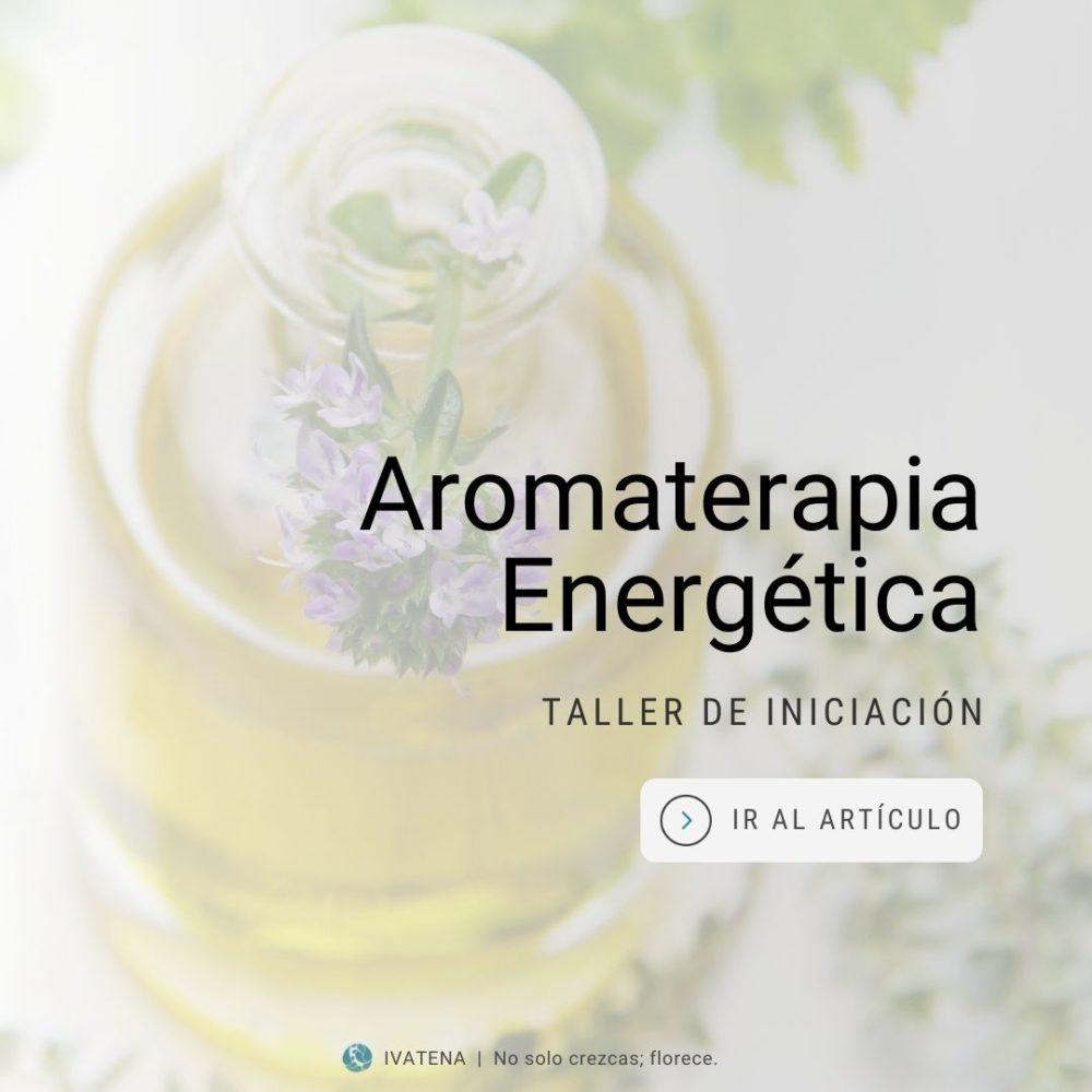 iniciacion a la aromaterapia energetica. taller