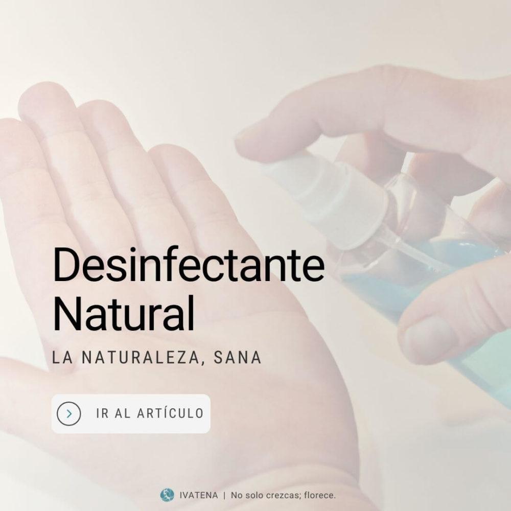 desinfectante natural