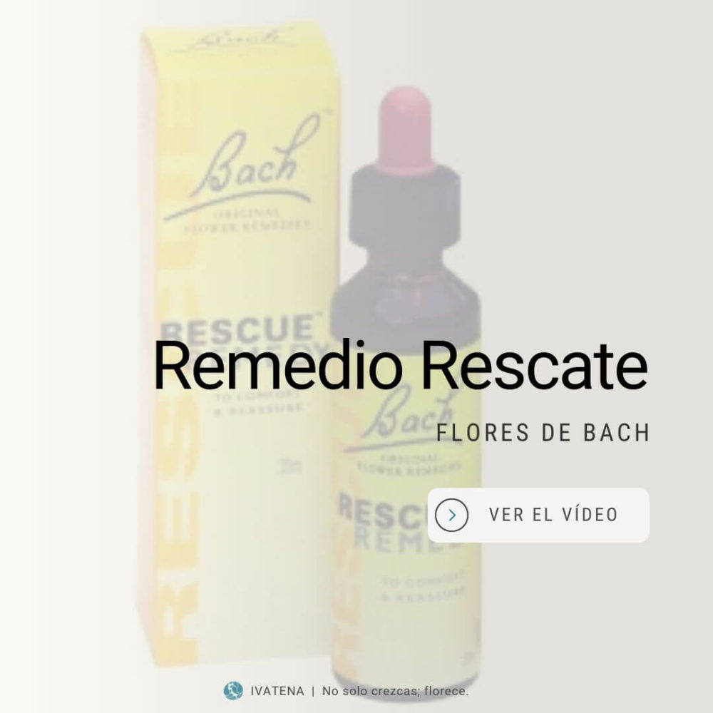 El remedio rescate en flores de Bach