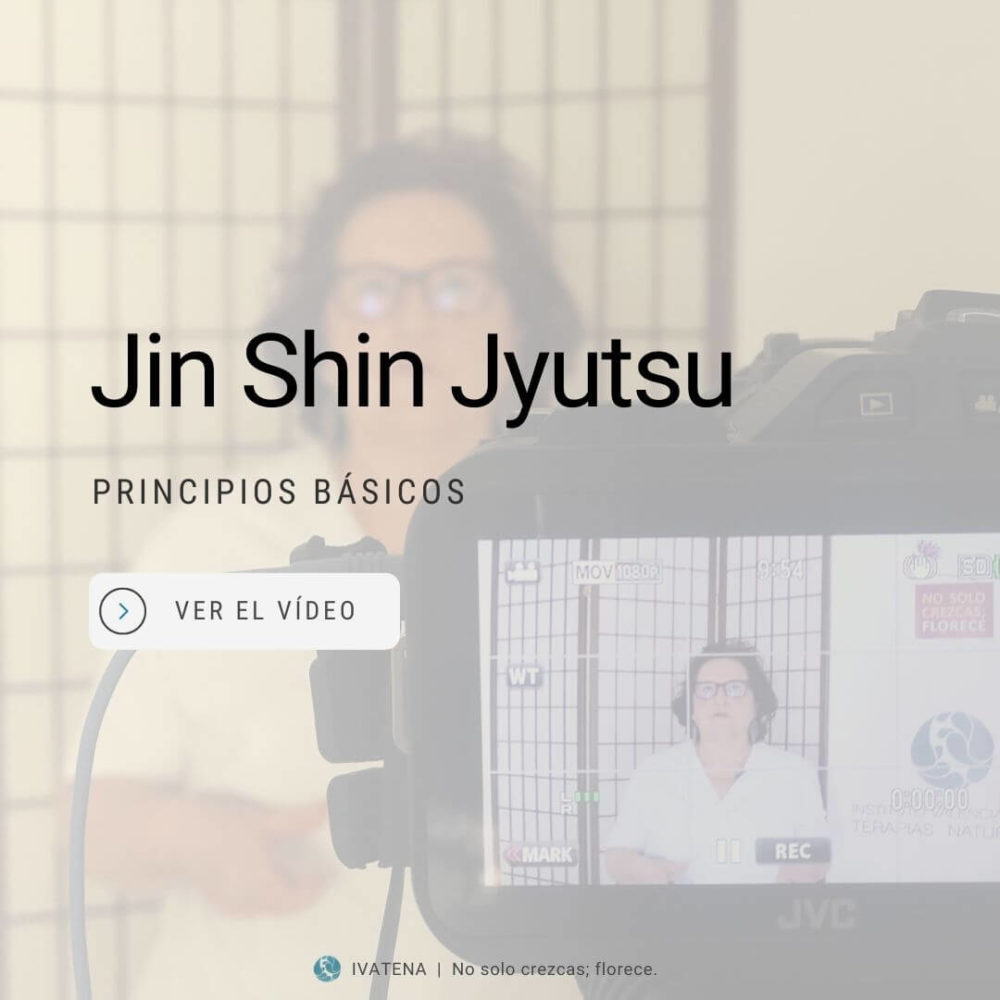 Principios basicos de jin shin jyutsu